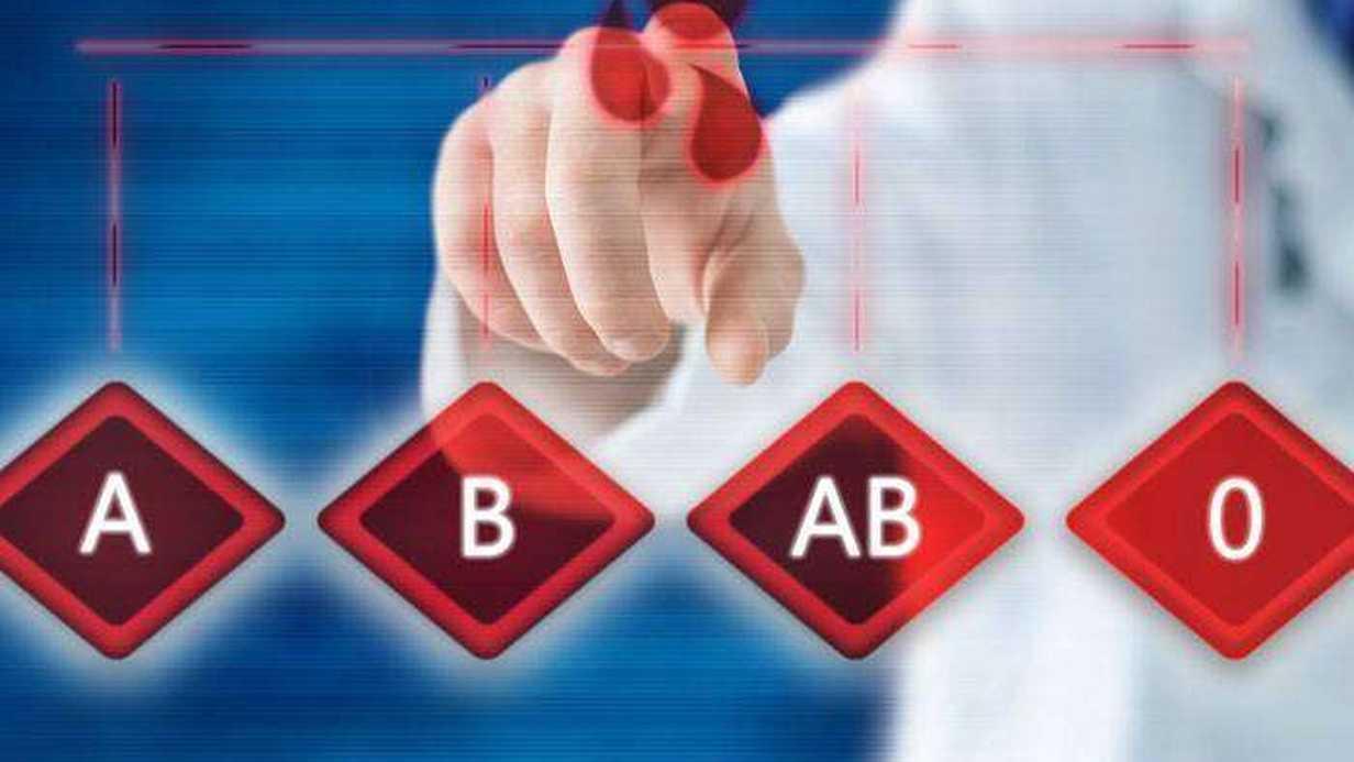 Kan Grubu Belirleme Nedir?